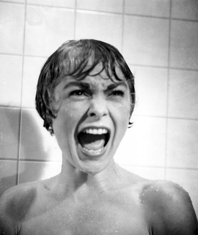 Psycho (1960)Directed by Alfred Hitchcock Shown: Janet Leigh (as Marion Crane)